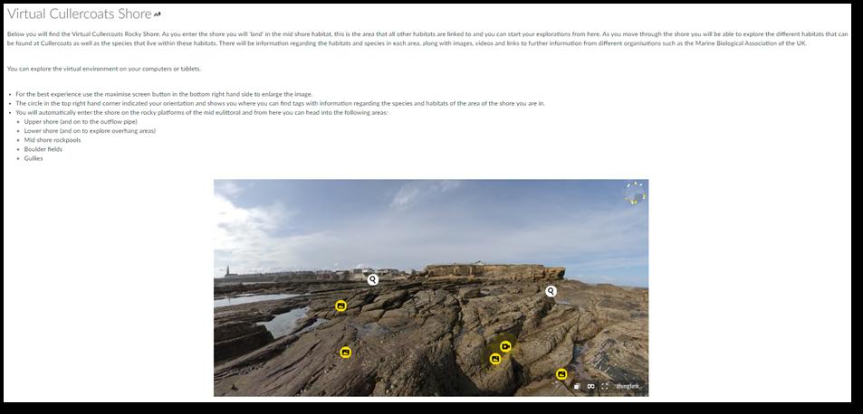 Virtual Cullercoats shoreline