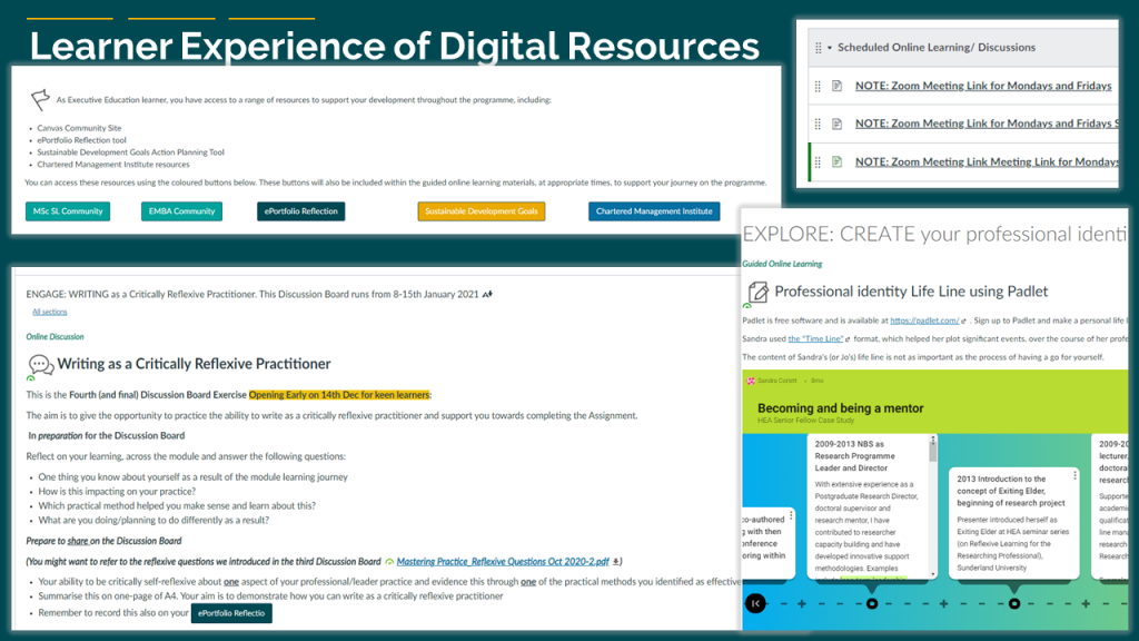 image learner experience and digital resources